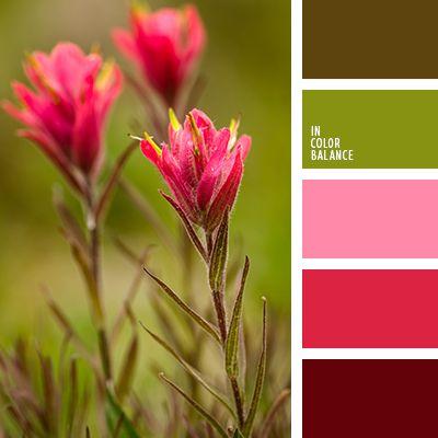 burdeos, chocolate, color rojo vino, escarlata vivo, marrón, marrón pantano, pantanoso, rojo, rosa pastel, rosado, verde, verde sucio.
