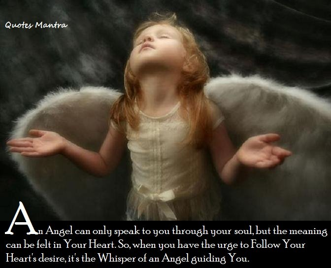 Angels | Funny~Sarcasm~Quotes | Pinterest