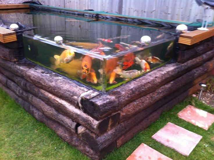 17 best images about koi pond on pinterest japanese for In ground koi pond