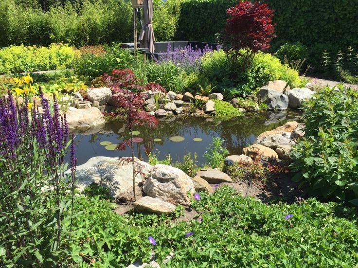 25 beste idee n over achtertuin vijvers op pinterest for Natuurlijke vijver maken