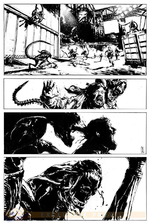 Premiers Aperçu des Comics Aliens, Avp et Predator de Dark Horse