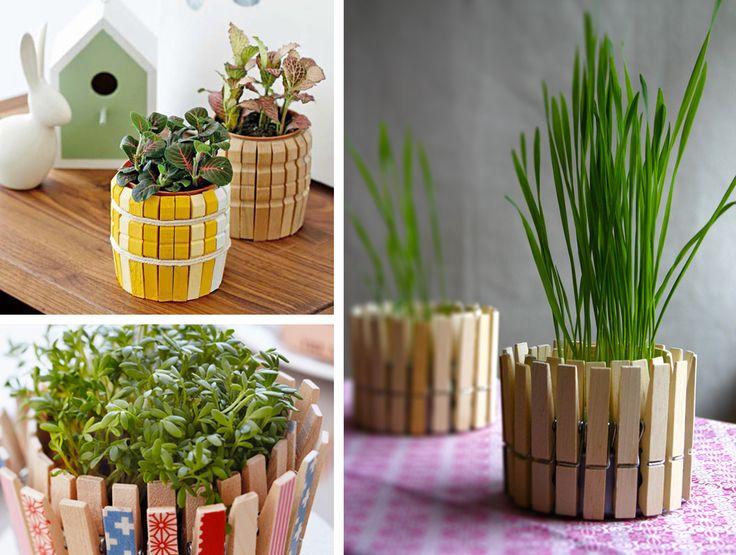 Vasi colorati per piante