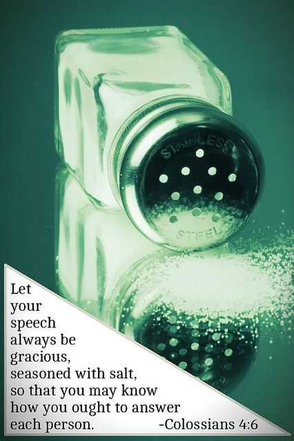 """✟♥ ✞ ♥✟ Ephesians 4:29 declares """" Let no corrupt word proceed out of your mouth  but what is good for necessary edification, that it may impart grace to the hearers.""""✟♥ ✞ ♥✟ Let your speech always be with grace, as though seasoned with salt, so that you will know how you should respond to each person.  Colossians 4:6  ✟♥ ✞ ♥✟"""