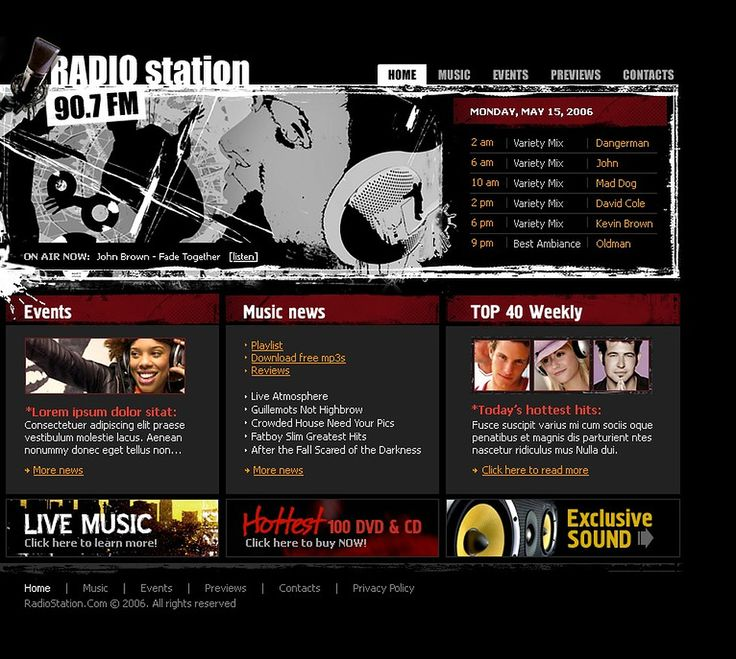 Radio Website Flash Template #11418