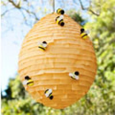 beehive piñata for a bug party…   cute but it is a good idea to teach the kids to swing bats at beehives :)