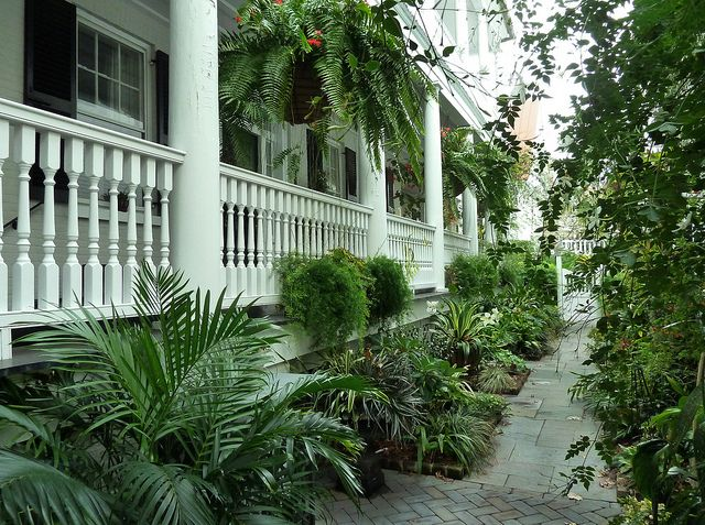 Charleston Garden-this is tropical but a similar idea planting-wise