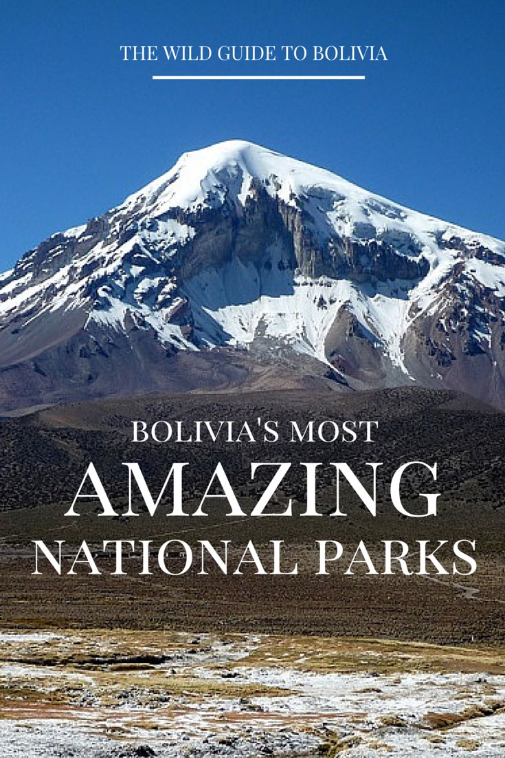 From incredible treks and cascading waterfalls, to towering jungle forests and rare wildlife encounters, Bolivia is one of the few places left in the world where travellers can experience Mother Nature at her finest! http://www.bolivianlife.com/5-national-parks-in-bolivia-to-set-foot-in/ #travel