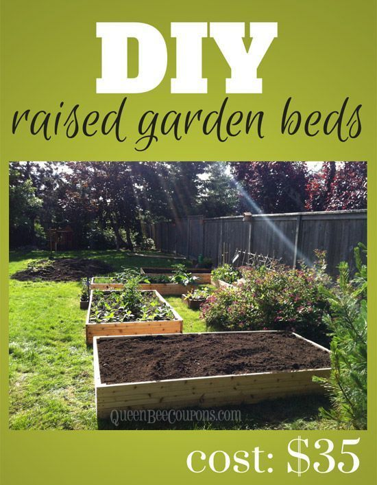DIY raised garden beds for just $35! Now is the perfect time to sow your gardens here in the great Pacific North West!