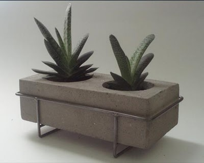 Macetero de cemento   -   Cement planter