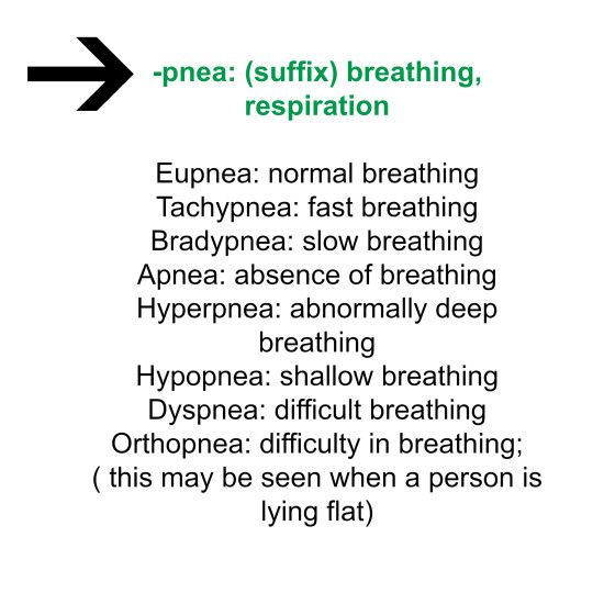-pnea means breath|Medical Terminology 4 Fun #suffix #RespiratorySystem