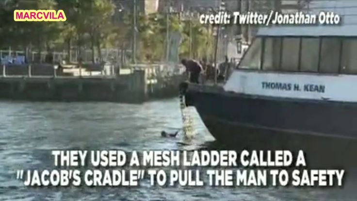 Video captures ferry crew rescuing man from river in NYC
