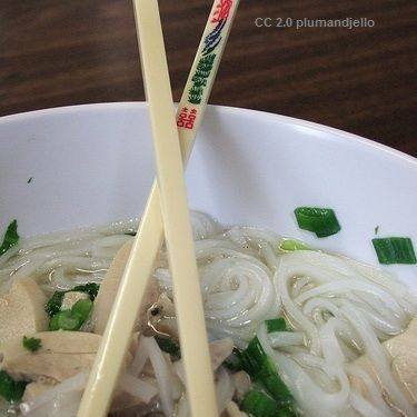 Dukan Diet Attack Phase Recipe : Chinese Shirataki Noodles