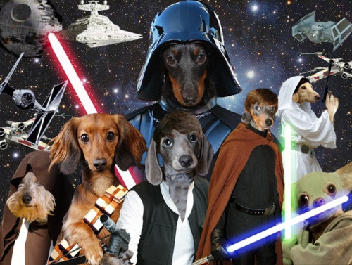 SPOILER ALERT! The new cast for the next episode of Star Wars: Attack of the Dox, has been leaked! ;)