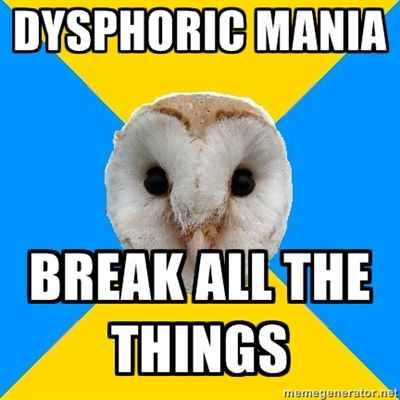Bipolar Owl on dysphoric mania.  I only experience dysphoric type mania.  It's horrible.