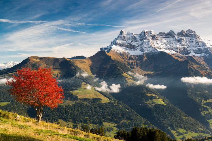Changing seasons - Morgins (Switzerland) by Luca Fontana on 500px