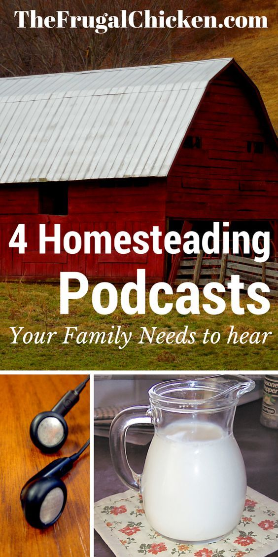 4 Homesteading Podcasts every family needs to hear. Learn traditional skills and stay informed with these 4 programs. From FrugalChicken.