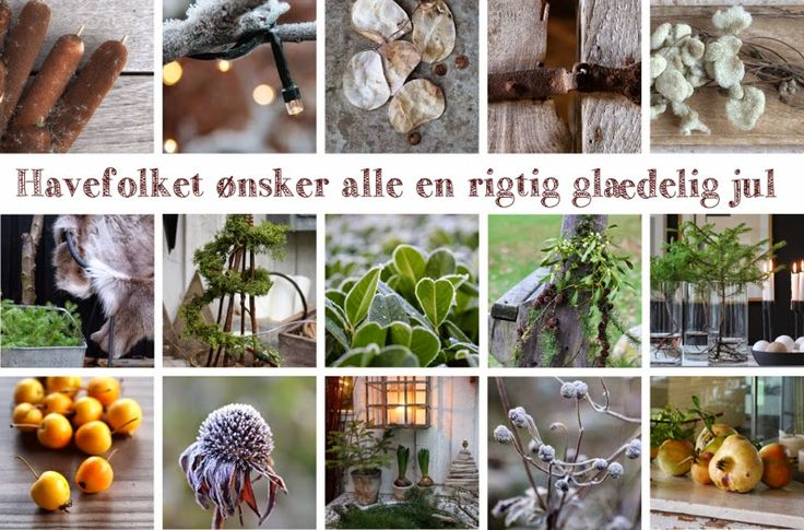 GLÆDELIG JUL - Merry christmas from havefolket.com