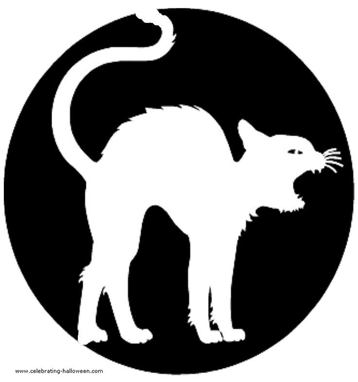 Best 25 Cat Pumpkin Stencil Ideas On Pinterest Pumpkin