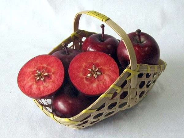 「恋しおり」 長野県長野市産の中まで赤く色づいた小ぶりなリンゴです。 この「恋しおり」は、十数年前畑に偶然生えたもの。サイズは5~6cmほどと小さいですが、中までしっかりと赤いのが特徴。 糖度は13度ほどありますが、酸味が強く加工向きのりんごです。 2013年に生産者個人が品種登録をしてあるオリジナル品種です。 8月の下旬から9月上旬に収穫し、30~36個入り(2kg)で販売のほか、銀座NAGANO他でジャムなどを販売しています。