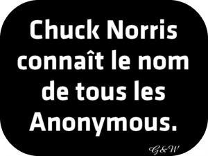 Chuck Norris connaît le nom de tous les Anonymous.