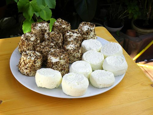 gbejna - maltese cheeslet made from goats milk