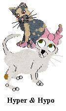 Dianes Kennelz - My Petz