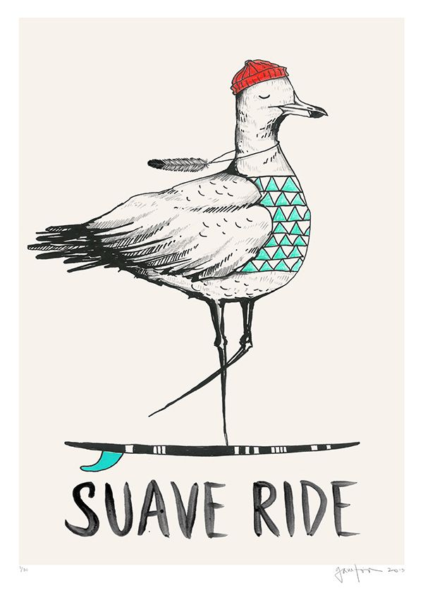 """suave ride"" seagull illustration © Daniela Garreton"