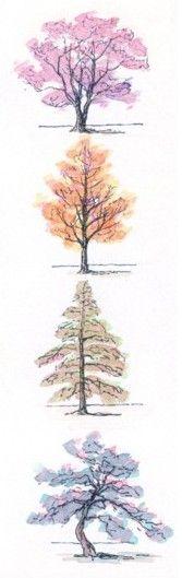 木の描き方の基本
