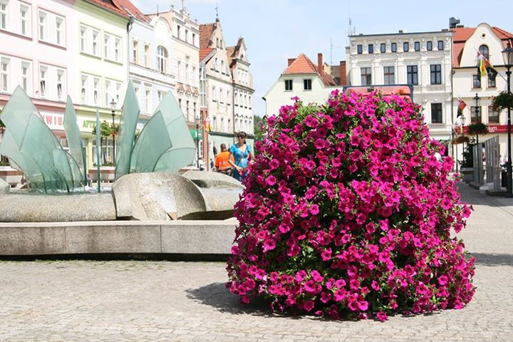 flower tower in żary, poland