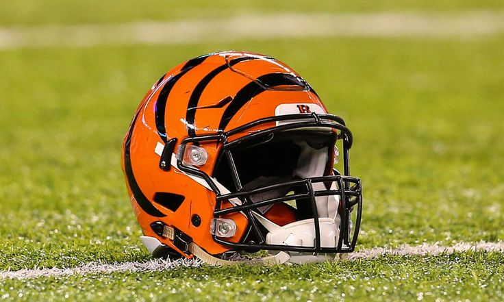 Bengals hire former Steelers LB Levon Kirkland as coaching intern = The Cincinnati Bengals announced on Tuesday that former Pittsburgh Steelers linebacker Levon Kirkland will work with the team as an intern with the Bill Walsh Diversity.....