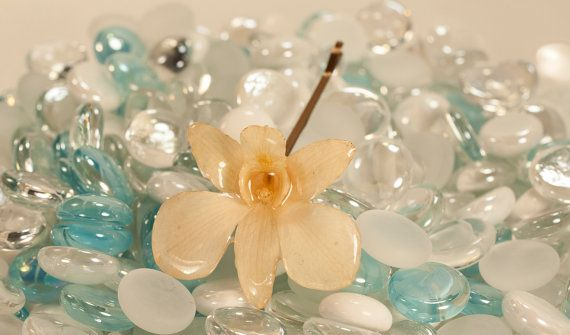 Real Orchid cream bridal hairl pin by SheleyCalypso on Etsy