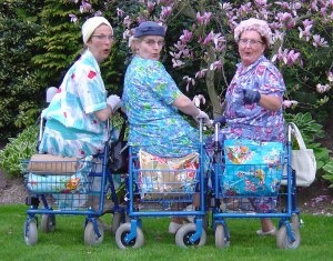 Grootmoeders  Lies, Zus en Sjaan, ofwel de Rollatordames, zijn drie dikke vriendinnen uit een doorzonwoning. Met in hun bloementasjes alles wat de inwendige mens nodig heeft. Het leven is al duur genoeg vandaag de dag. Als alle mooie meiden griep hebben, zetten zij zich als Hostess Service Graag Gedaan met 200 procent in om het feest vlekkeloos te laten verlopen.