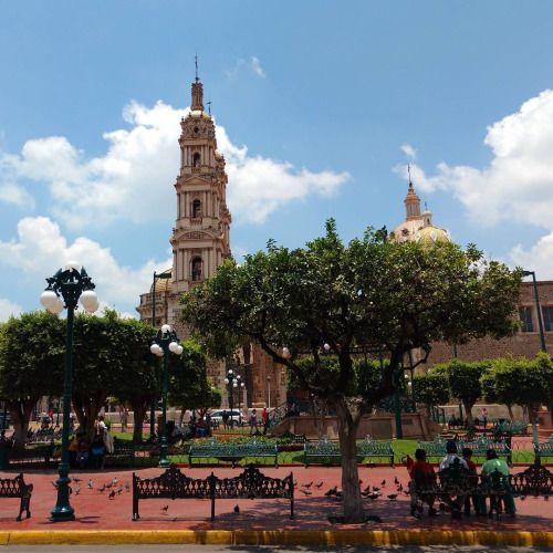 Jardín principal de Tepatitlan y al fondo el Templo de San Francisco de Asís. #tepatitlan #jalisco #mexico #icu_mexico #wu_mexico #vive_mexico #templosmx #pueblosmagicos #puebleando #fandelacultura #mexico_tour #mexico_fotos #mexico_magico #mexico_maravilloso #mexicoandando #mochileromx #mexicolors #instagram #instagrammers #postal.mx (en Tepatitlán de Morelos Centro)