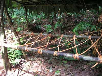 Several ideas here.  I liked the wood and rope bed inside the lean to.  Survival Shelters