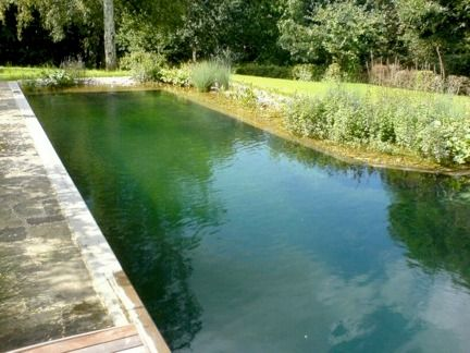 Lap pool idea for hubby!   10 Eco-Friendly Natural Swimming Pools