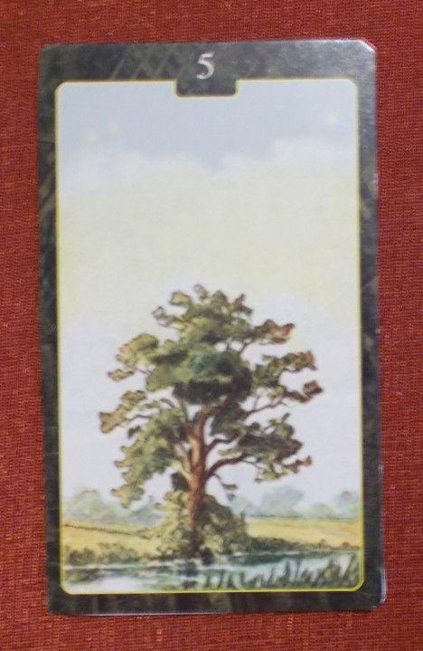 Fa Lenormand kártya - Tree Lenormand Card - Lenormand Oracle Cards