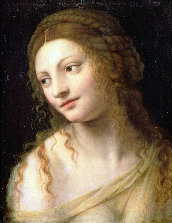 62 best Renaissance Hair Design images on Pinterest
