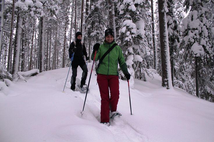 Schneeschuhlaufen im Wandergebiet Soiperoinen, Taivalkoski, Lappland, Finnland
