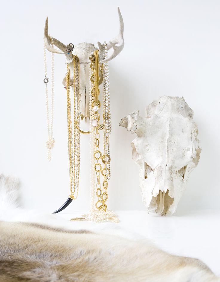 animal skulls for displaying jewelry. chic and tough!
