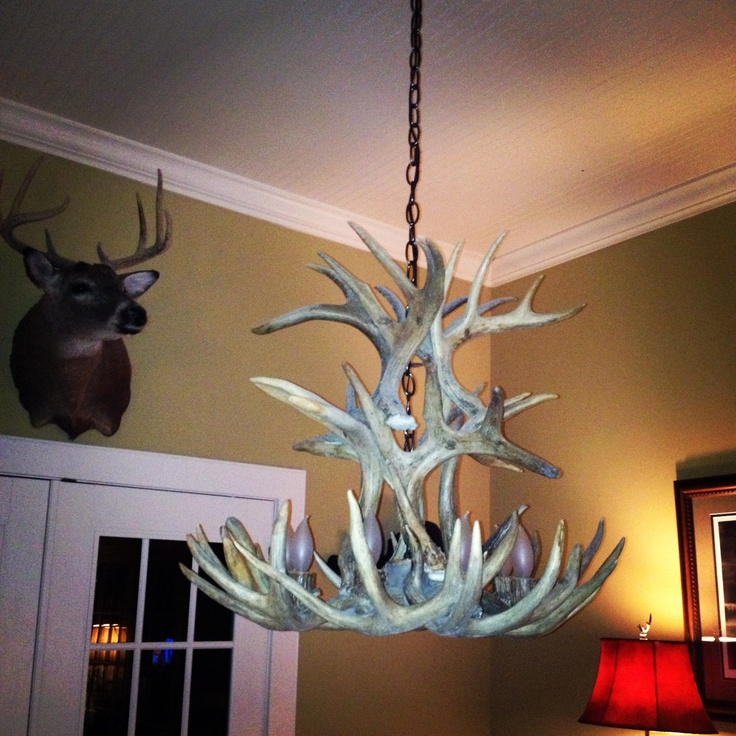 Love this deer horn chandelier!