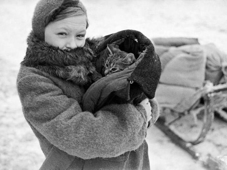 Коты блокадного Ленинграда (воспоминания и факты) » Женский Мир