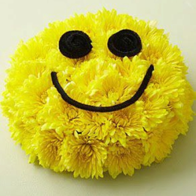 Happy Face Flower\'s :) | Flower Power | Pinterest | Face, Smiley and ...
