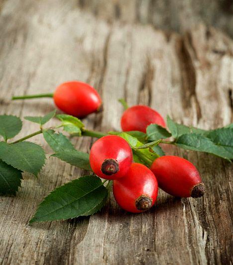 A máj méregtelenítése: 8 gyógynövény, ami segíti a fogyást | femina.hu Csipkebogyó