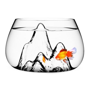 Award-winning Glass Fish Bowl. This exquisite hand-blown glass fishbowl—which also doubles as a terrarium—won the vaunted International Design Excellence Award (IDEA) in 2011. $140.00