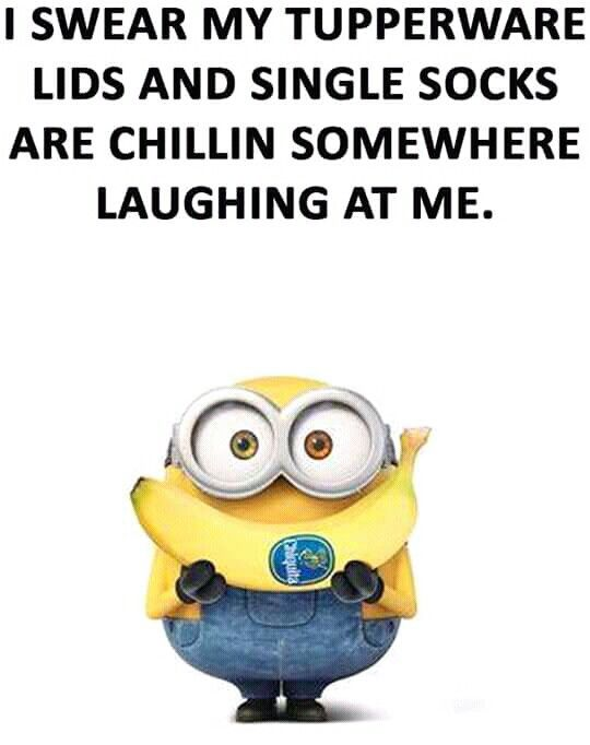 I swear my Tupperware lids and single socks are chillin' somewhere laughing at me. - minion