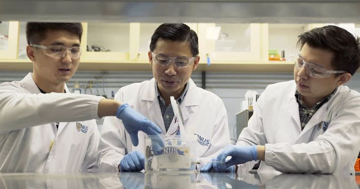 Этилен является одним из основных видов сырья, используемого химической промышленностью для производства пластмасс и резины.