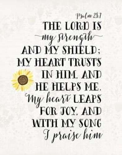 The Lord Gives Me Strength He Is Like A Shield That Keeps Me Safe