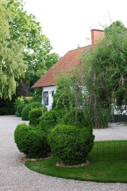I söndags kväll besökte jag en av de finaste trädgårdar jag sett. Ägarinnan heter Anette och det underbara huset och trädgården ligger strax utanför Lund. Jag varnar, det kommer många bilder i detta inlägget. Ingången till trädgården består av två pergolor. Först en tunnel med gullregn och