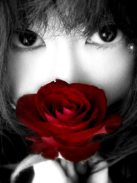 single red rose....that is all you need....