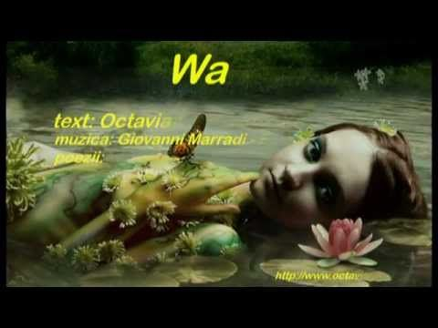 Wara - Octavian Anuta